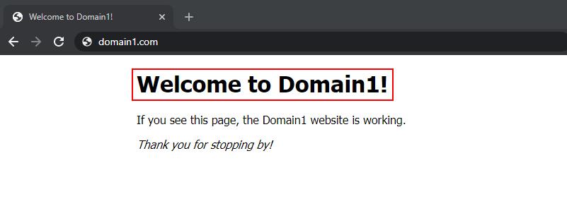 Hosting additional website using server block