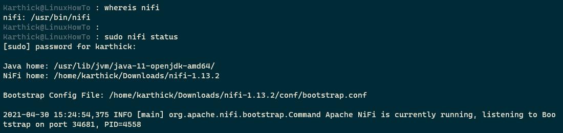 Check Apache Nifi Status